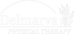 Delmarva Physical Therapy